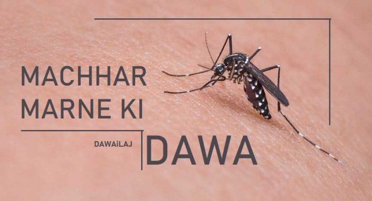 मच्छर मारने की दवा 5 मिनट में मच्छर का सफाया करे