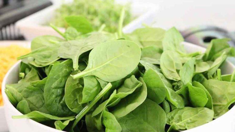 विटामिन इ फूड्स स्त्रोत Vitamin E Foods Sources In Hindi