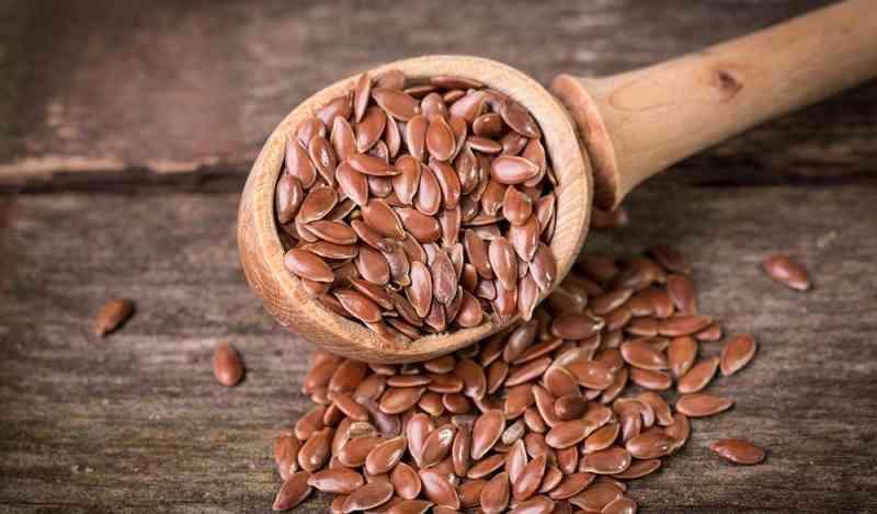 अलसी के फायदे नुकसान Alsi Ke Fayde Flax Seeds In Hindi