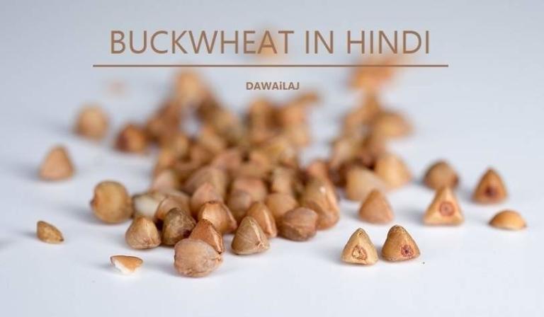 कुट्टू के फायदे और नुकसान Buckwheat In Hindi