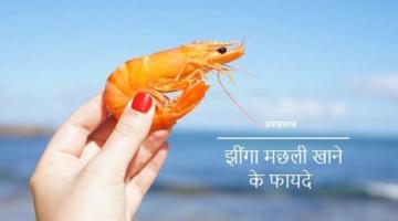 झींगा मछली खाने के फायदे और नुकसान Shrimp In Hindi