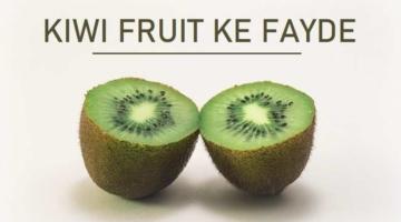 कीवी फल खाने के फायदे, नुकसान Kiwi Fruit Benefits In Hindi