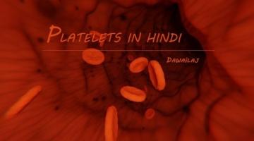 प्लेटलेट्स क्या है और प्लेटलेट्स की कमी के लक्षण Platelets In Hindi